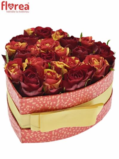 Krabička růží REDFLASH červená 15x8cm