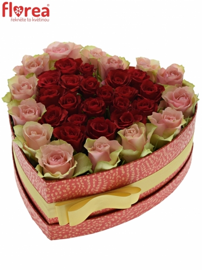 Krabička růží ROSEBELLINE červená 24x10cm