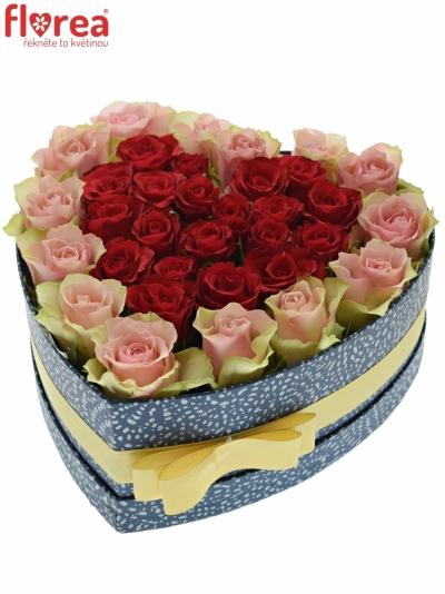 Krabička růží ROSEBELLINE modrá 24x10cm