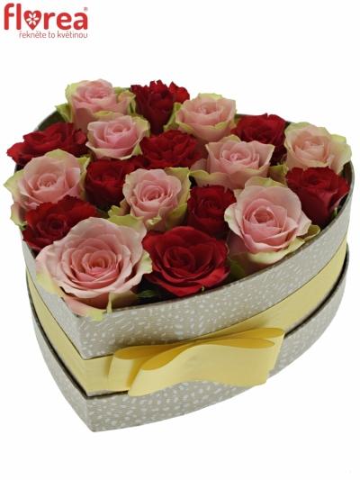 Krabička růží ROSEBELLINE šampaň 19x9cm