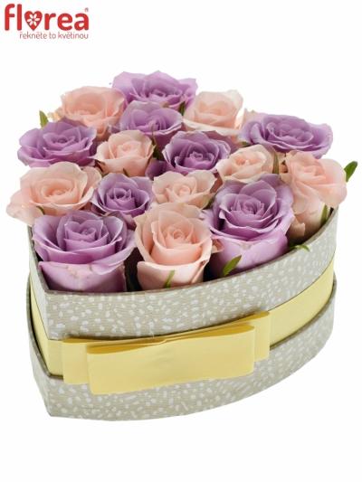 Krabička růží SANTONI šampaň 15x8cm