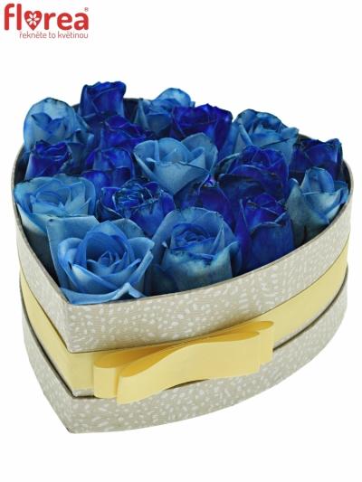 Krabička růží SENNA šampaň 19x9cm