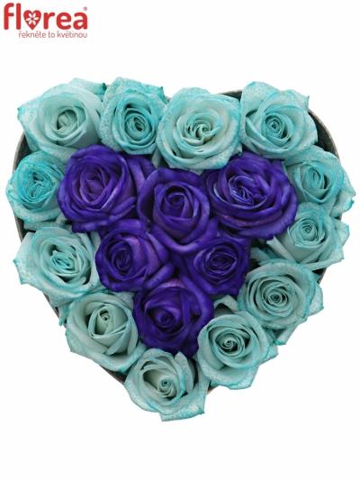 Krabička růží SHAYLA šampań 19x9cm