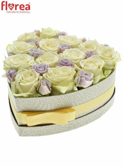 Krabička růží SHELINA šampaň 24x10cm