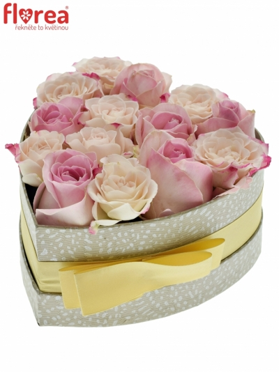 Krabička růží SORBENA šampaň 15x8cm