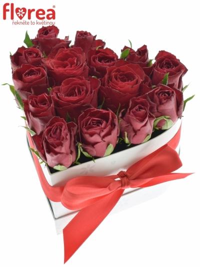 Krabička růží srdce bílé AEDAN 16x9cm