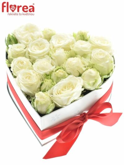 Krabička růží srdce bílé ENORA 16x9cm
