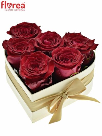 Krabička růží srdce champagne  DORENA 18x7cm