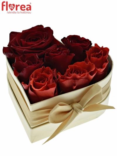 Krabička růží srdce champange HESIONE 14x6 cm