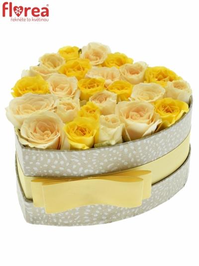 Krabička růží SUNNY MAYGA šampaň 15x8cm
