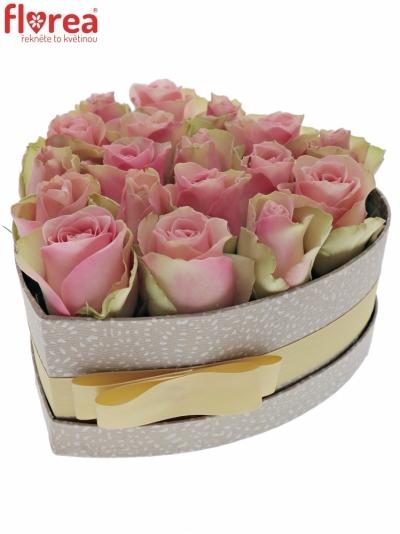 Krabička růžovozelených růží BELLE ROSE šampaň 19x9cm