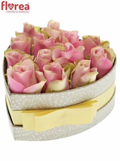 Krabička růžových růží BELLEVUE šampaň 15x8cm