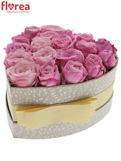 Krabička růžových růží LADY BOMBASTIC šampaň 15x8cm