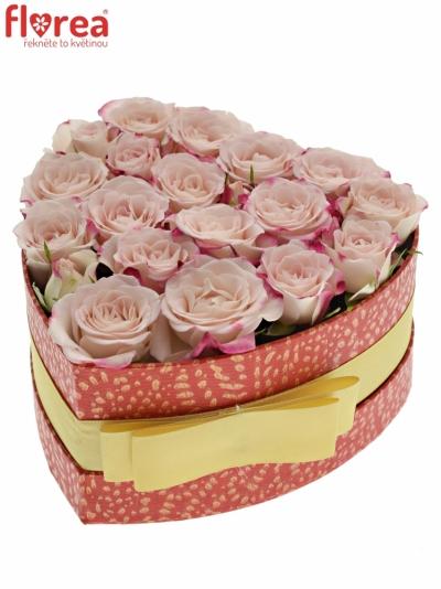 Krabička růžových růží REFLEX červená 15x8cm