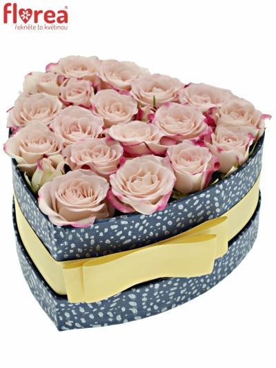 Krabička růžových růží REFLEX modrá 15x8cm