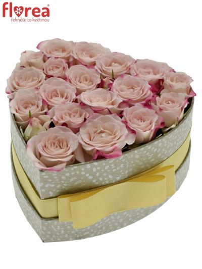 Krabička růžových růží REFLEX šampaň 15x8cm