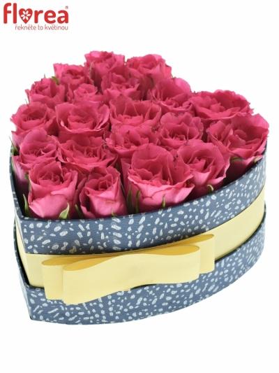 Krabička růžových růží WILD CALYPSO modrá 15x8cm