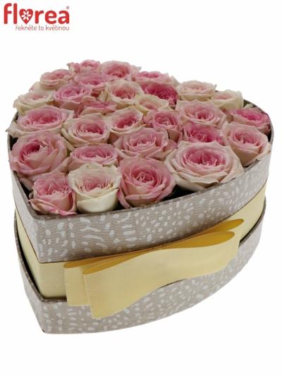 Krabička světle růžových růží CREAMY TWISTER šampaň 15x8cm