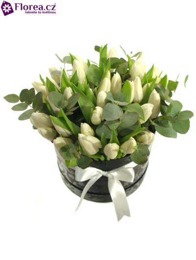 Krabička tulipánů černá GRETE Ø20v15cm