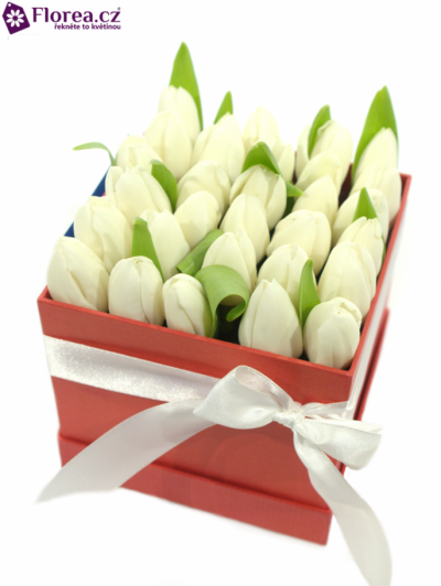 Krabička tulipánů červená EUGENI 12x12x11cm