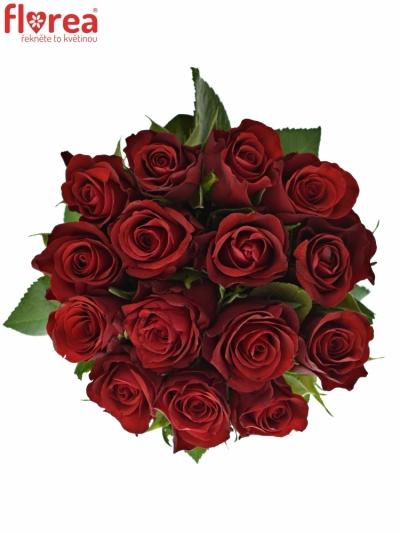 Kyice 15 červených růží RED RIBBON 60cm