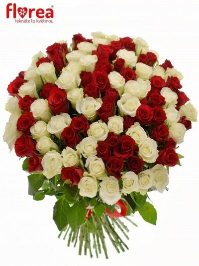 Kytice 100 míchaných růží AGATHA
