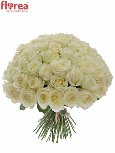Kytice 100 bílých růží AVALANCHE  35cm