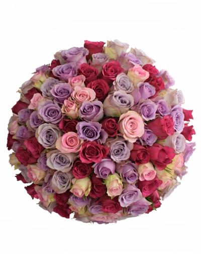 Kytice 100 míchaných růží CLAUDIIA 40cm