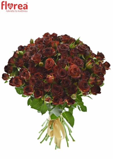 Kytice 100+ květů růží CHOCOCCINO 40cm