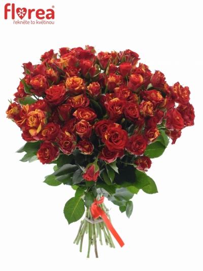 Kytice 100+ květů růží FIRE FLASH 50cm