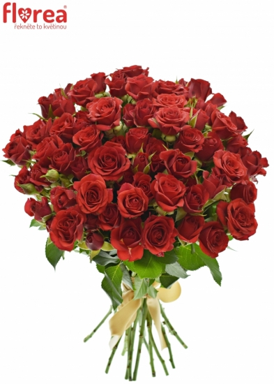 Kytice 100+ květů růží MIRABEL 50cm
