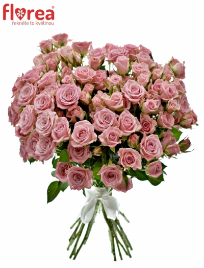 Kytice 100+ květů růží ODILIA 40cm