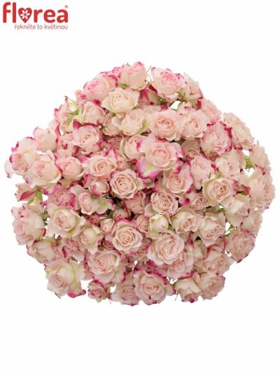 Kytice 100+ květů růží REFLEX 40cm