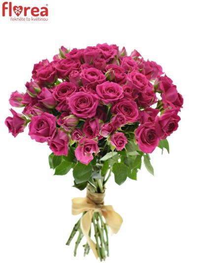 Kytice 100+ květů růží TESSA 40cm