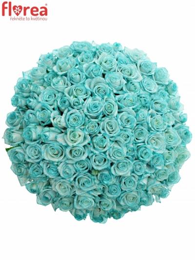 Kytice 100 ledově modrých růží ICE BLUE VENDELA 70cm