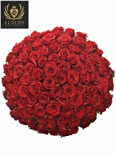 Kytice 100 luxusních růží RED EAGLE 90cm