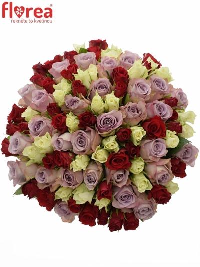 Kytice 100 míchaných růží DEVORA 40cm