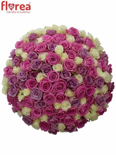 Kytice 100 míchaných růží LORRIESS 40cm
