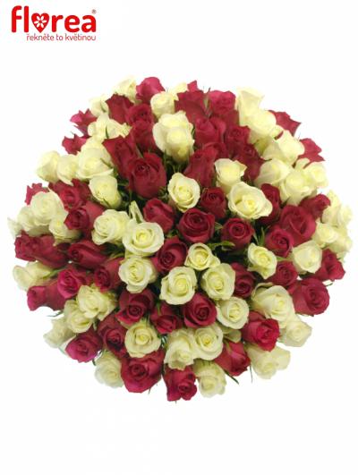 Kytice 100 míchaných růží CRONUS 35cm