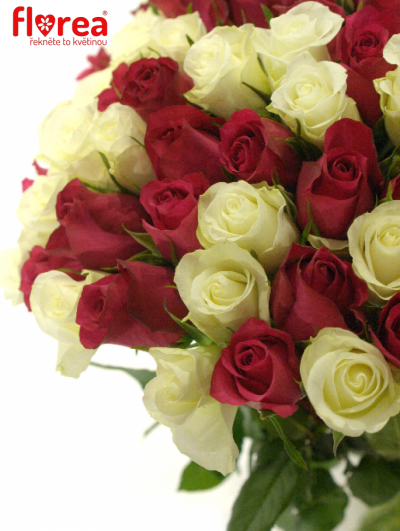 Kytice 100 míchaných růží CRONUS