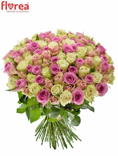 Kytice 100 míchaných růží FIOLA