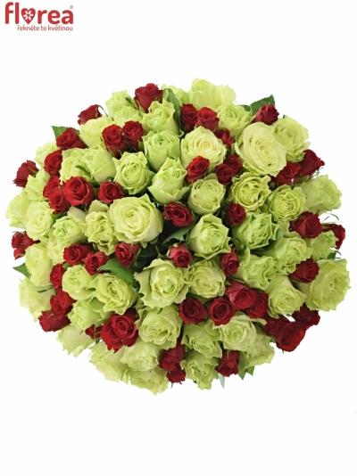 Kytice 100 míchaných růží GRAZYNA 40cm