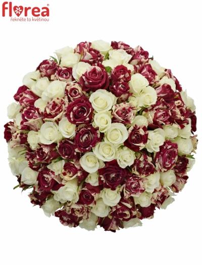Kytice 100 míchaných růží HARLESPEN