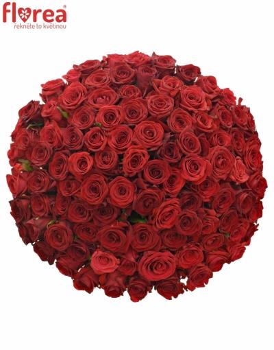 Kytice 100 míchaných růží JOANNA 70cm