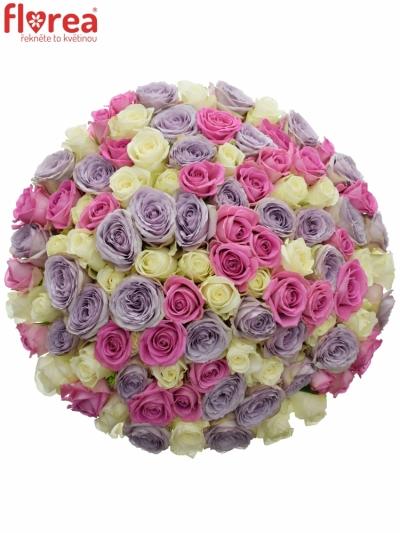 Kytice 100 míchaných růží LIGHT LORRIESS 50cm