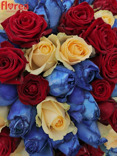 Kytice 100 míchaných růží MARRINETA 70cm