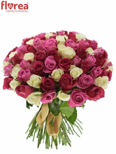 Kytice 100 míchaných růží PURPLE DANCE