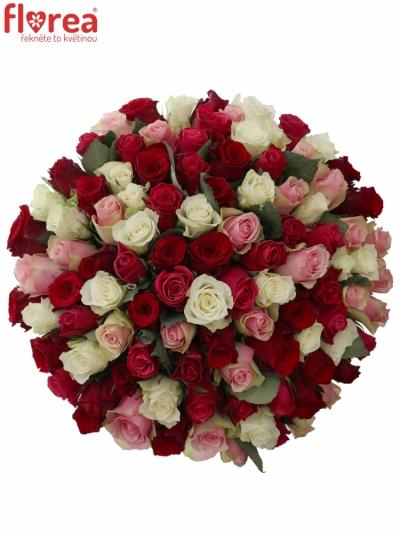 Kytice 100 míchaných růží RADWAN 50cm
