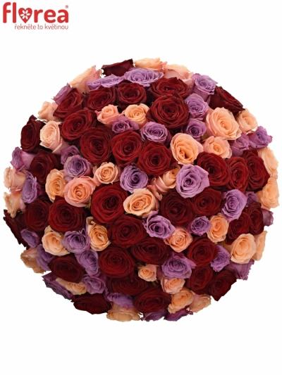 Kytice 100 míchaných růží RED LADY ORLEA 50cm