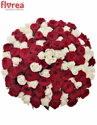 Kytice 100 míchaných růží TAMARA 90cm